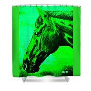 horse portrait PRINCETON green Shower Curtain