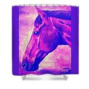 horse portrait PRINCETON pink Shower Curtain
