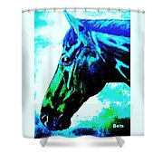 horse portrait PRINCETON really blue Shower Curtain