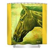 horse portrait PRINCETON soft colors Shower Curtain