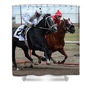 Horse Power 10 Shower Curtain