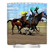 Horse Power 17 Shower Curtain