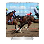 Horse Power 6 Shower Curtain