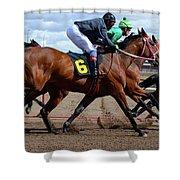 Horse Power 9 Shower Curtain