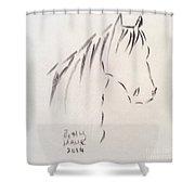 Horse-rest Shower Curtain