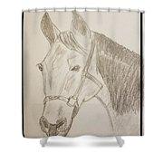 Rosie The Horse Shower Curtain