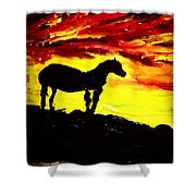 Horse Rider In The Sunset Shower Curtain