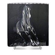 Horse Running Along The Shore Shower Curtain