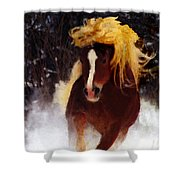 Horse Running In Snow Shower Curtain