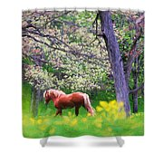 Horse Running In Spring Woods Shower Curtain