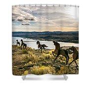 Horse Sculpture 4 Shower Curtain