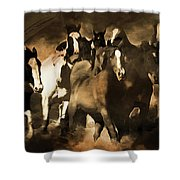 Horse Stampede Art 08a Shower Curtain