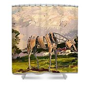 Horse Statue In The Field Shower Curtain
