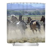 Horse Thief Shower Curtain