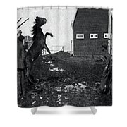 Horse Trainers Shower Curtain
