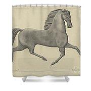Horse Weather Vane Shower Curtain