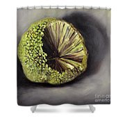 Horseapple Shower Curtain