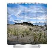 Horseneck Beach Ma. 3 Shower Curtain