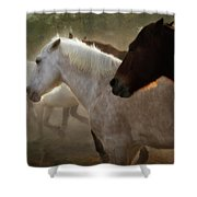 Horses-02 Shower Curtain
