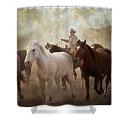 Horses-04 Shower Curtain