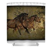Horses 30 Shower Curtain