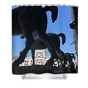 Horses Asses Shower Curtain