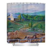 Horses At Gettysburg Shower Curtain