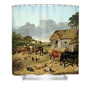 Horses Drinking From A Water Trough, With Pigs And Chickens In A Farmyard Shower Curtain