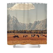 Horses Grazing In Front Of The Teton's Shower Curtain