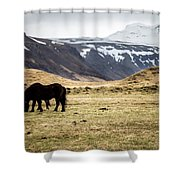 Horses Grazing Shower Curtain