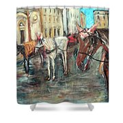 Horses In Florence Shower Curtain