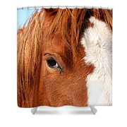 Horse's Mane Shower Curtain