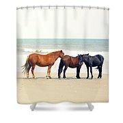 Horses On Beach Shower Curtain
