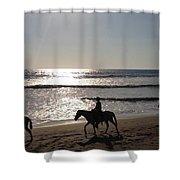 Horses On The Beach Shower Curtain
