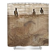 Horses Run With Us Collage Shower Curtain