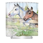 Horses Watercolor Sketch Shower Curtain