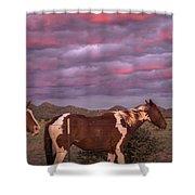 Horses With Southwest Sunset Shower Curtain
