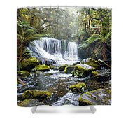 Horseshoe Falls Shower Curtain