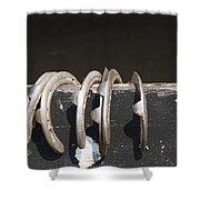Horseshoes Shower Curtain by Danielle Allard