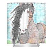 Horsin' Around Shower Curtain