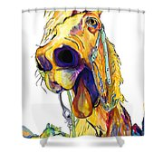 Horsing Around Shower Curtain