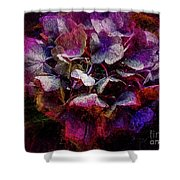 Colorful Hortensia Closeup Shower Curtain