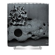 Hortensia Stone Circle Of Life Bw Shower Curtain