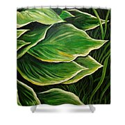 Hostas And Grass Painting Shower Curtain