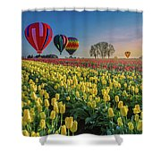 Hot Air Balloons Over Tulip Fields Shower Curtain