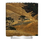 Hot Days Shower Curtain