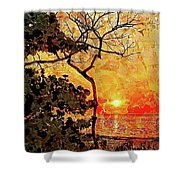 Hot Night In The Tropics Shower Curtain