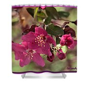 Hot Pink Blossoms Shower Curtain