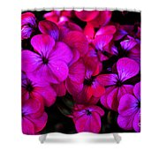 Hot Pink Florals Shower Curtain