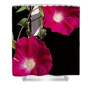 Hot Pink Glories Shower Curtain